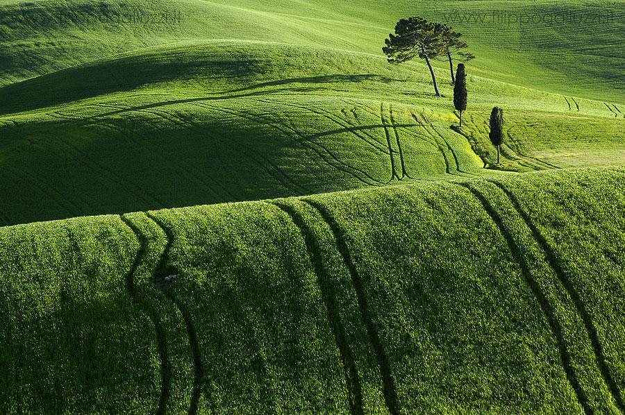 paesaggi toscani Val d'Orcia