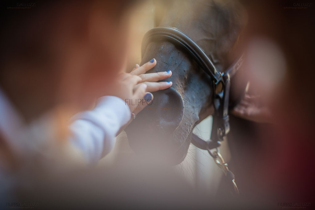 palio-siena-photos-filippogalluzzi-003