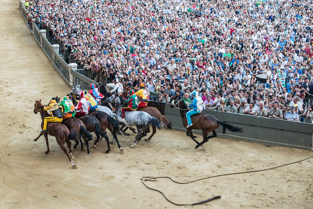 palio-siena-photos-filippogalluzzi-018
