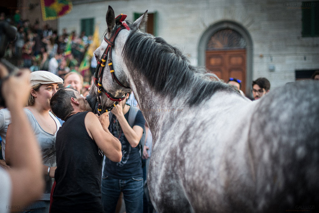 palio-siena-photos-filippogalluzzi-048