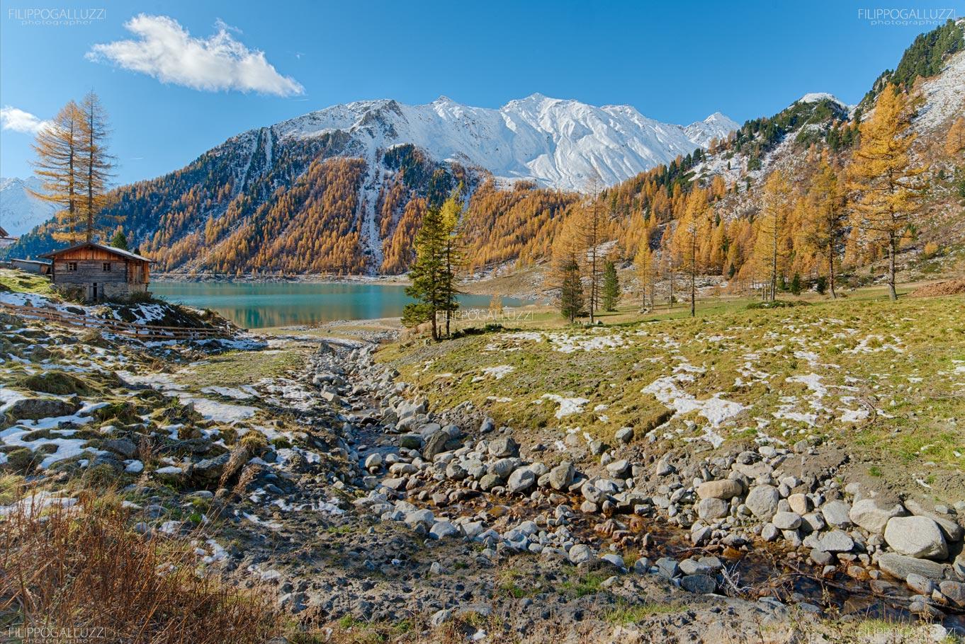 Alto Adige , Autunno - Larici dorati sul lago di Neves, Valle Aurina