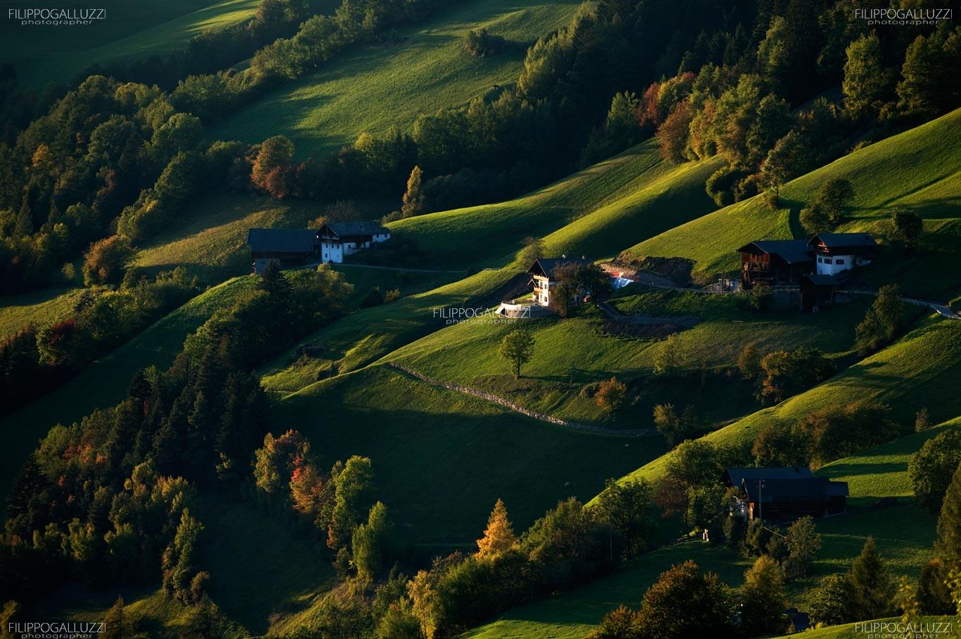 Sudtirol, i masi della val di Funes - Vilnoesser tal