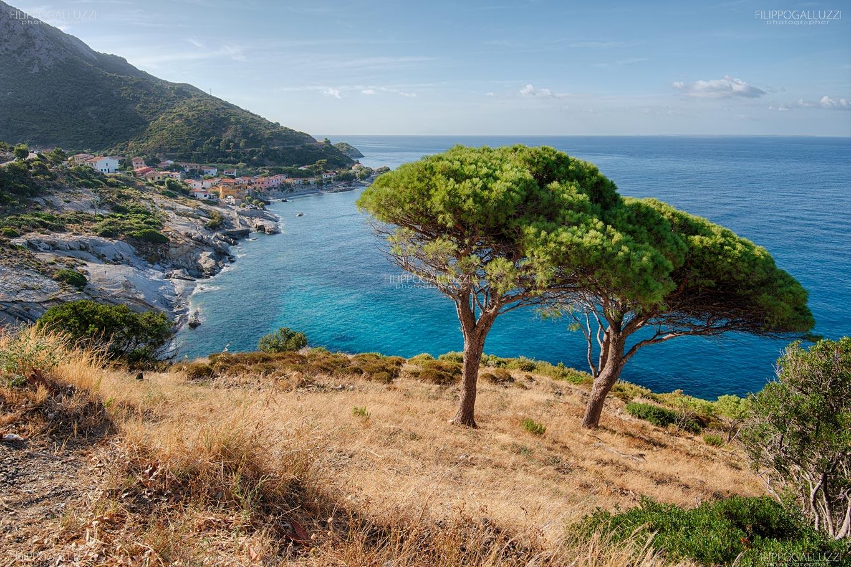 elba, il mare blu di  Pomonte